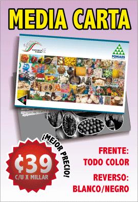 impresion de volantes publicitarios en mexico media carta flyers